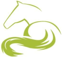 cheval symbole 5 1