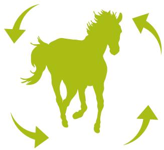 cheval circle 1